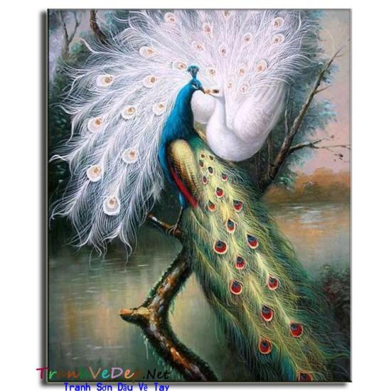 Tranh sơn dầu Vẽ Chim Công C04