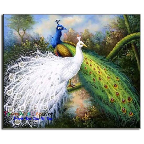 Tranh sơn dầu Vẽ Chim Công C14