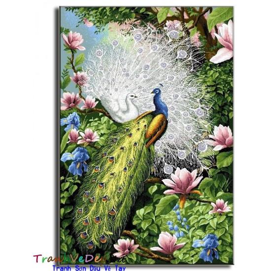 Tranh sơn dầu Vẽ Chim Công C19
