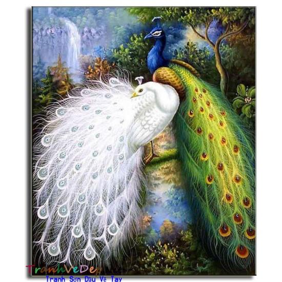 Tranh sơn dầu Vẽ Chim Công C22