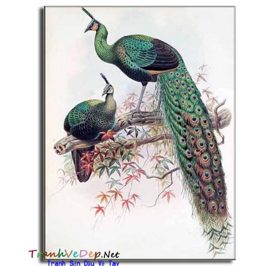 Tranh sơn dầu Vẽ Chim Công C24