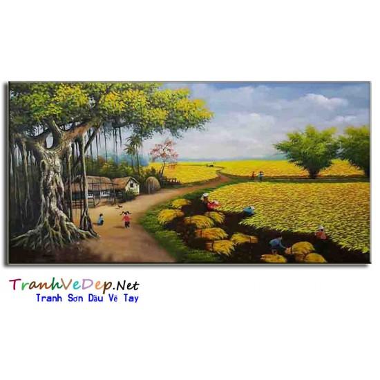 Tranh Sơn Dầu  Phong Cảnh Mùa Lúa Gặt L01